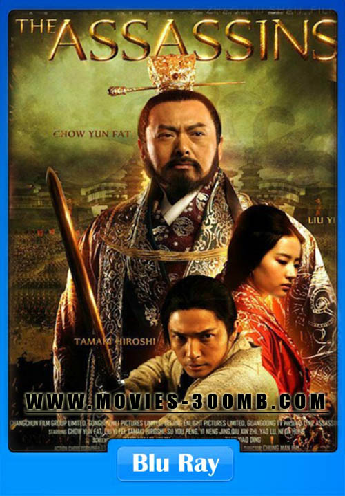 The Assassins 2012 Hindi Dual Audio BRRip 480p 300MB Posrer