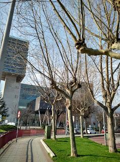 Llegando al B.E.C. para el Desembalaje Bilbao
