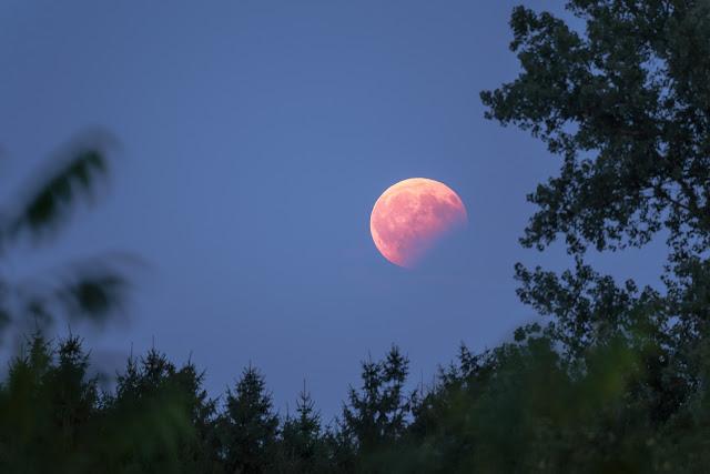 Lunar Eclipse seen from Garching