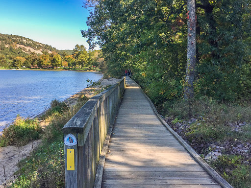 Ice Age Trail boardwalk on the South Shore at Devil's Lake State Park