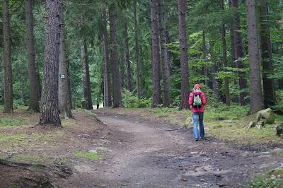 szlak zielony na zamek Bolczów