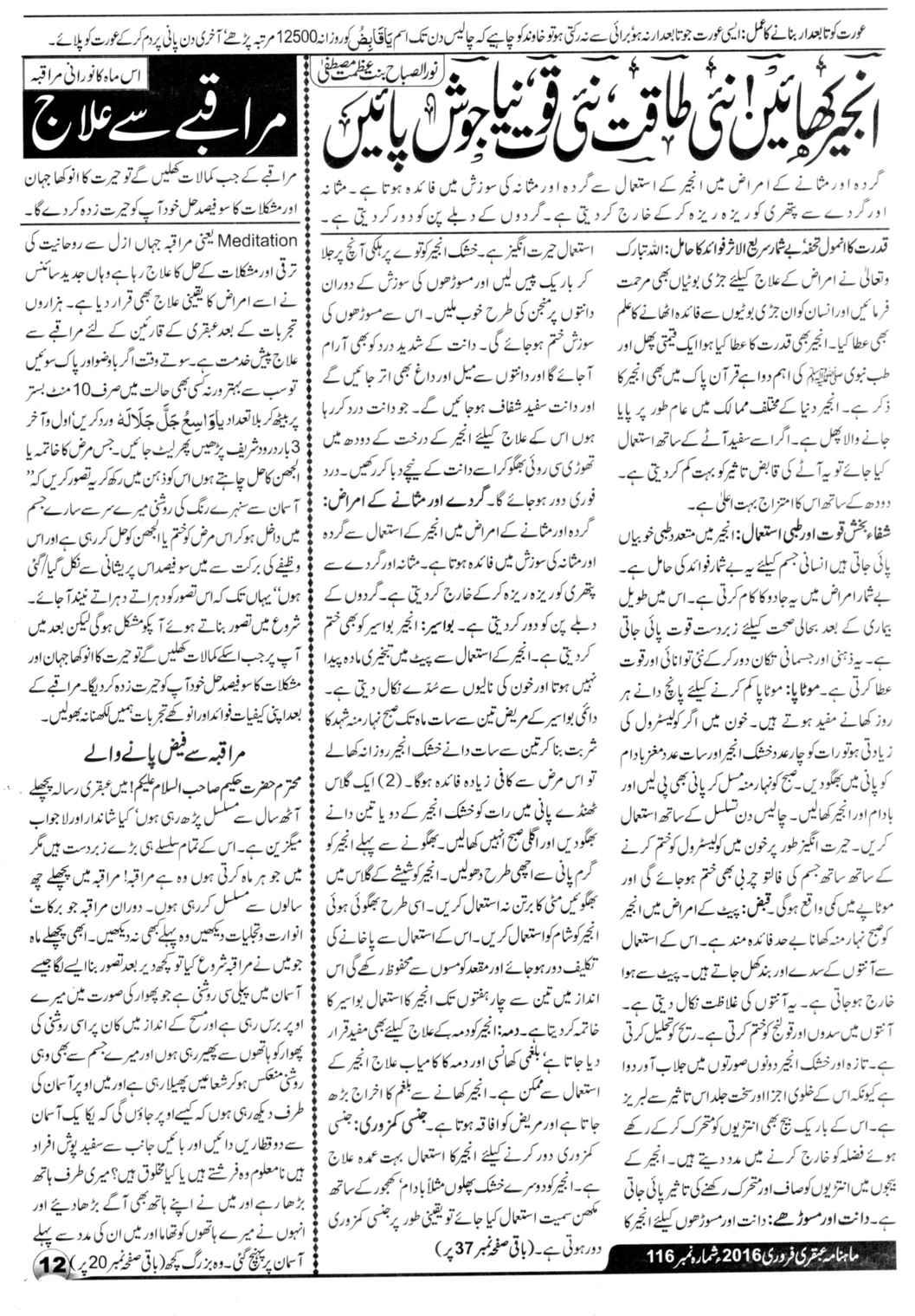 Page 12 Ubqari Magazine February 2016