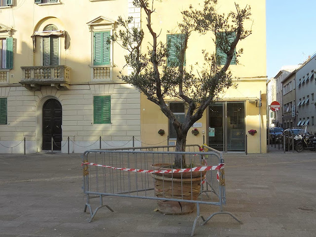 Taped vase behind barriers, piazza Goldoni, Livorno