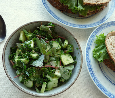 Cucumber & Purslane Salad