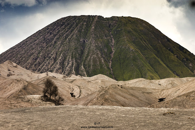 Enjoy you'r holidays and trip to java with Ijen Tamansari Tour visit to Mt Bromo - Ijen Tours 3D2N, 2D1N. Mt Ijen - Bromo 3D2N, 2D1N.