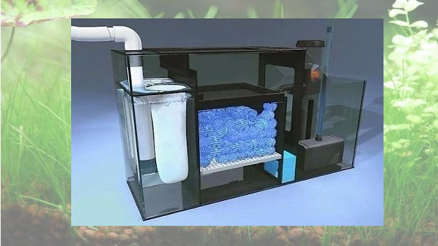 filtro wet/dry húmedo seco