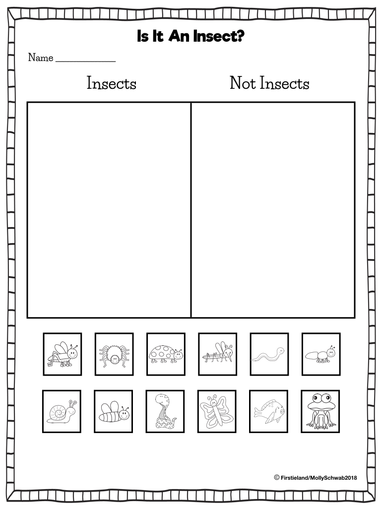 small resolution of Insect Activities in First Grade - Firstieland