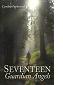 Seventeen Guardian Angels by Cynthia Papierniak book cover