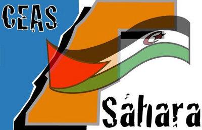 Campaña 2016 - Por una MINURSO con competencias en derechos humanos - CEAS Sáhara