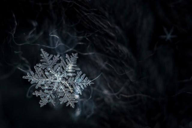 Макрофото снежинки на советский объектив Индустар 50-2.