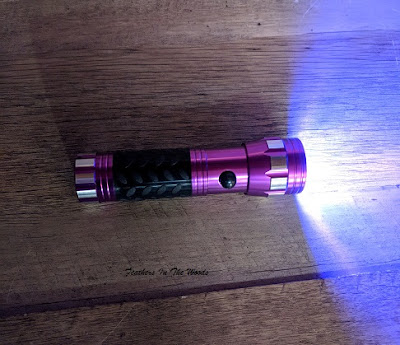 LED blacklight flashlight for pet stains