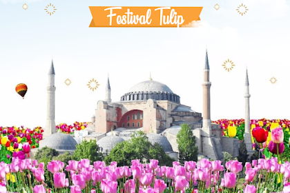 Umroh Plus Turki Festival Tulip