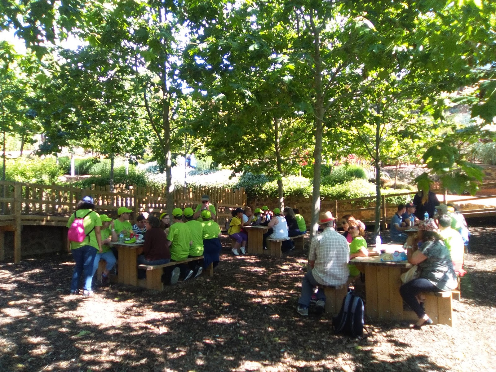 Afatram excursi als jardins del cap roig for Jardines cap roig