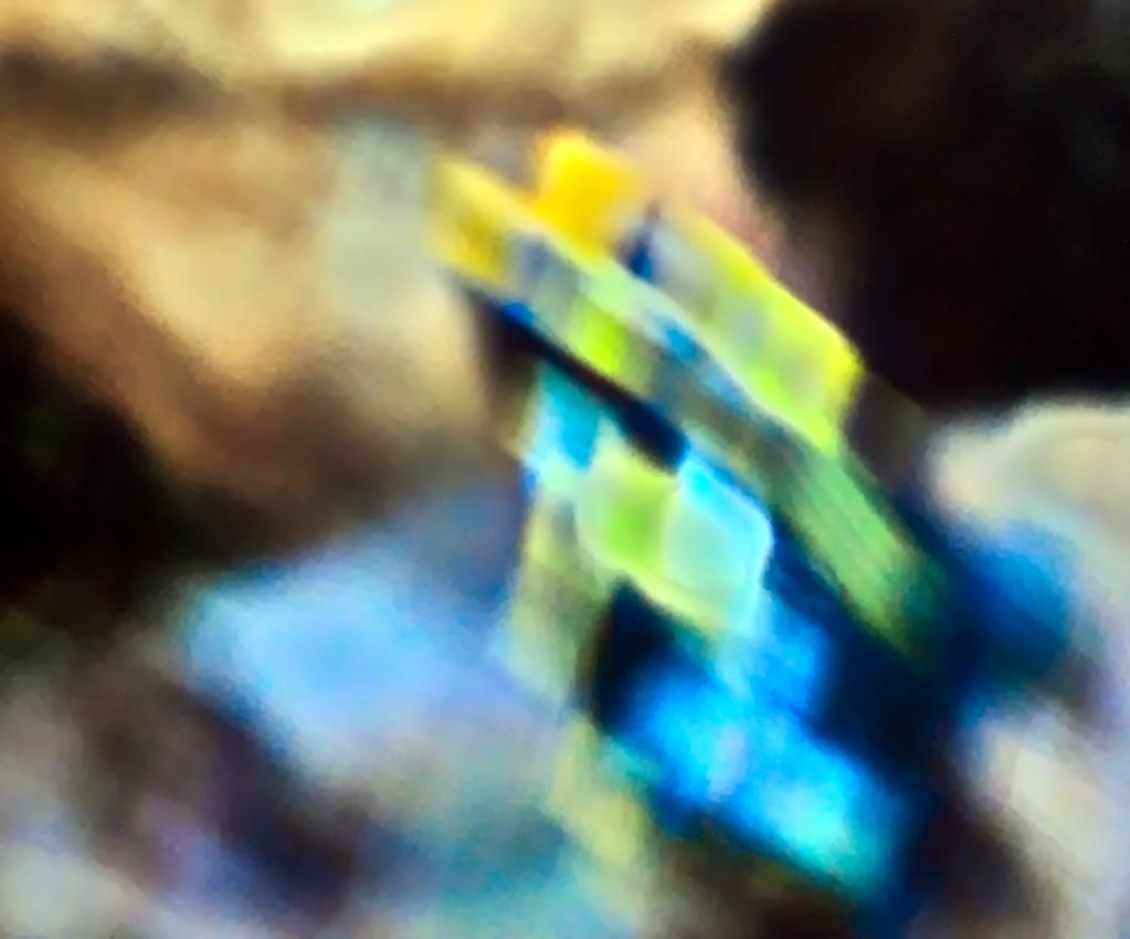 #267 – Das unbekannte Objektiv (5) – An der Samsung NX mini und selbstgebastelter Vorderblende