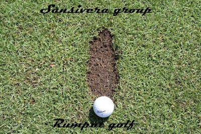 Rumput-Golf-Lapangan-golf