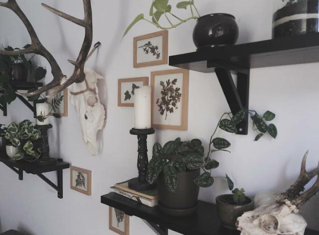 Jak zamienić swój pokój w chatkę czarownicy? - moje porady dotyczące staroci i roślinek