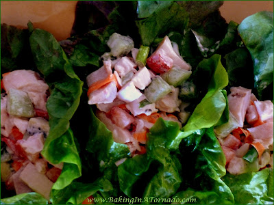 Fruited Chicken Lettuce Wraps, chicken, fresh fruits and veggies in a light sauce rolled into lettuce leaves | Recipe developed by www.BakingInATornado.com | #recipe #salad