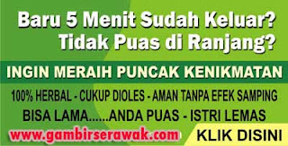Gambir Sarawak, gambir serawak malaysia, hajar jahanam