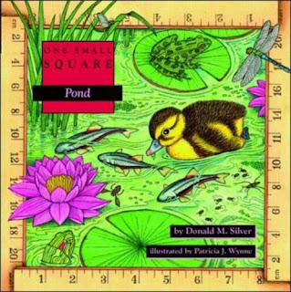 Pond ecology