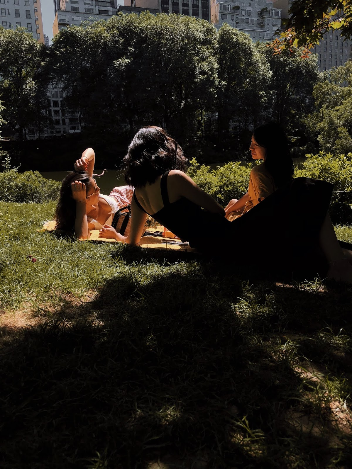 Central Park Picnic ideas, Central Park Picnic with friends, girls picnic in Central Park, Picnic cheeseboards, Picnic editorials - FOREVERVANNY / 072018 / Home Sweet Home