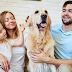 Evcil Hayvan Besleyerek Kendinize İyilik Yapın