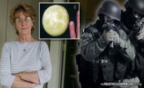 Idosa Joann Davis é interrogada pela NASA após tentar vender pedra lunar
