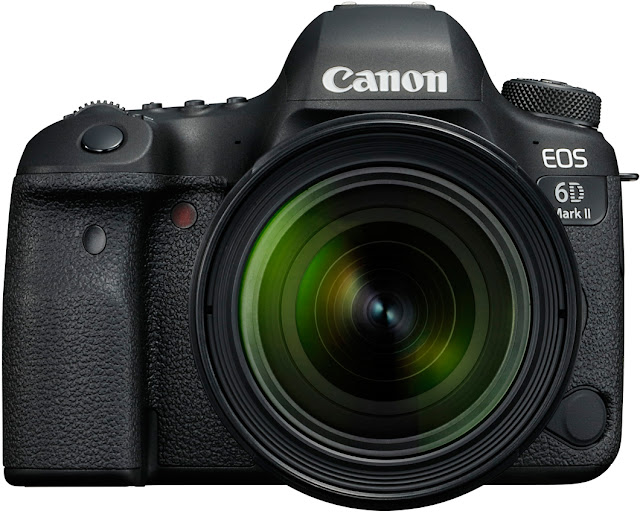 Canon 6D Mark II with 24-70mm f/4L Lens