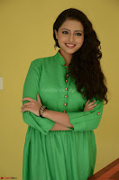 Geethanjali in Green Dress at Mixture Potlam Movie Pressmeet March 2017 030.JPG