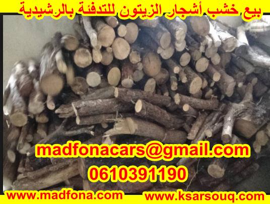 بيع خشب أشجار الزيتون للتدفئة بالرشيدية