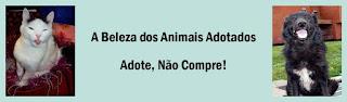http://adote-naocompre.com/