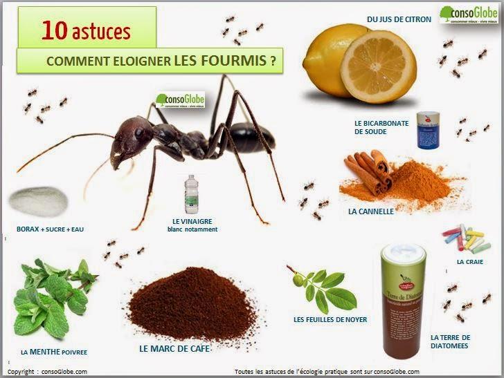 rsf91 prevention autonomie et survivalisme 12 methodes naturelles eloigner les fourmis. Black Bedroom Furniture Sets. Home Design Ideas