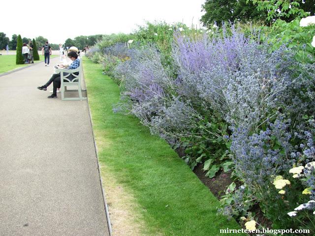 Один день в Лондоне: Кенсингтонские сады