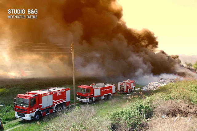 43 δασικές πυρκαγιές σε ένα 24ωρο