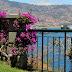Hóspedes entrados nos hotéis da Madeira até outubro com crescimento de 5,2%