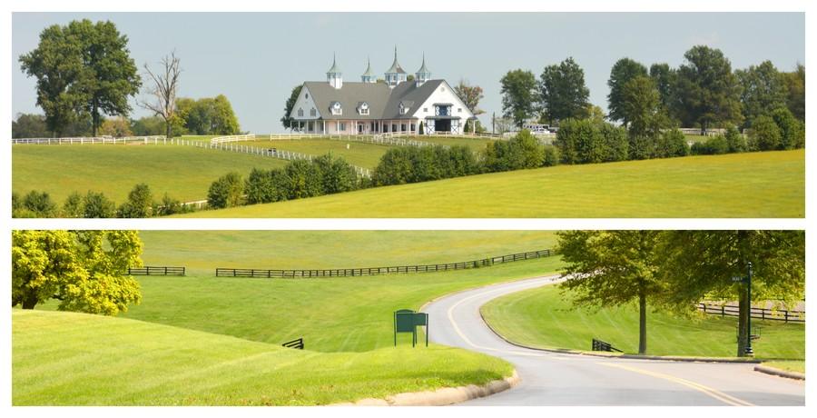 Vallée Blue Grass au Kentucky