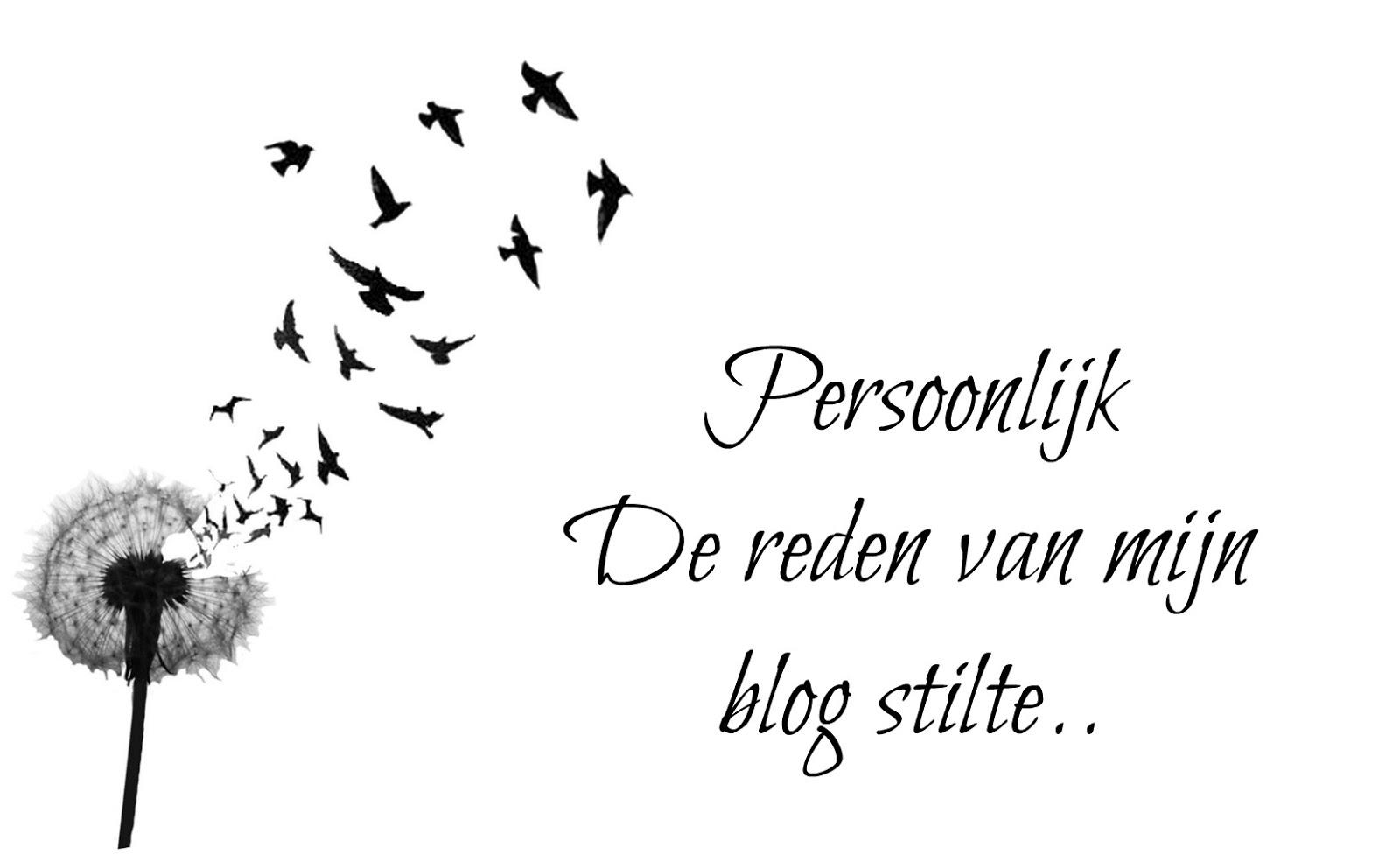 Sharmaine Sarina Persoonlijk De Reden Van Mijn Blog Stilte