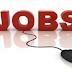 Job Opening For Cabin Crew @GO AIR - Latest Job Delhi NCR