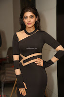 Pranitha Subhash in a skin tight backless brown gown at 64th Jio Filmfare Awards South ~  Exclusive 177.JPG