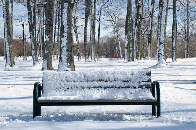 A lonely, snow-covered bench in winter.