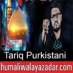 https://www.humaliwalyazadar.com/2018/09/tariq-purkistani-nohay-2019.html