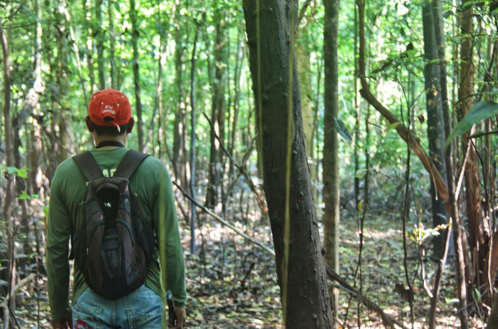 Nativo da Amazônia, nos guiando pela selva.