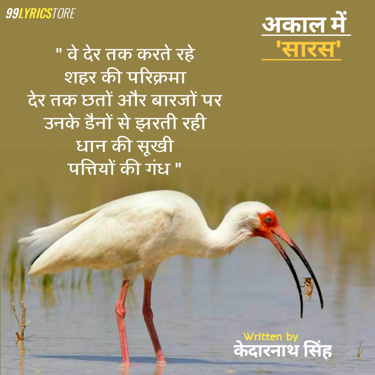 'अकाल में सारस' कविता केदारनाथ जी द्वारा लिखी गई है। इस कविता में कैसे धीरे धीरे-धीरे सारस कहीं खो गये कैसे सारस का  अकाल पड़ गया  इसका जिक्र इस कविता में केदारनाथ जी ने किया है।