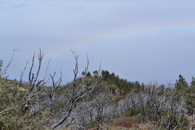 rainbow on the mountain