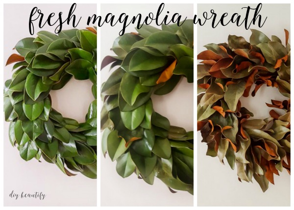 how a fresh magnolia wreath will dry
