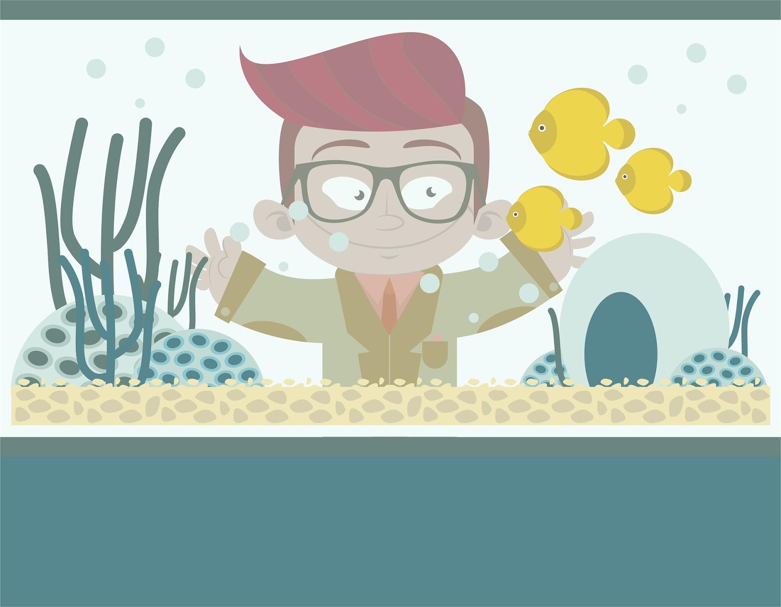 Weihnachtsgeschenke für Aquarium Besitzer: Ideen für Fischfreunde ...