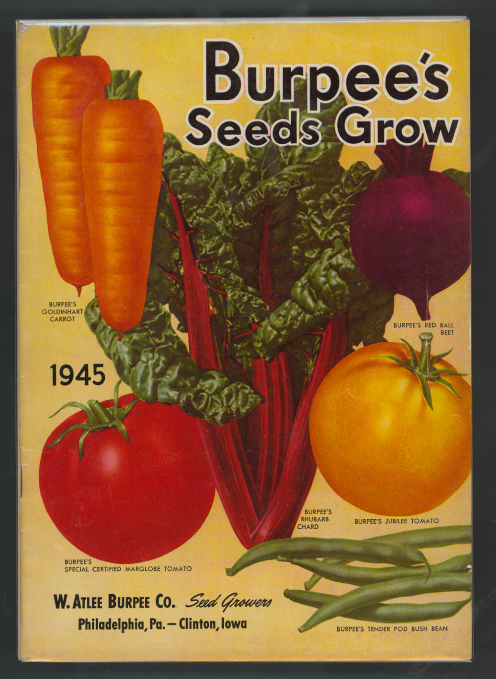 Burpee Seeds Catalog by Burpee. Staple Bound. $ (1 used & new offers) Burpee Seeds Catalog by Burpee. Staple Bound. $ (2 used & new offers) BURPEE SEEDS Seventy Fifth Anniversary Catalog by Anonymous. Currently unavailable. Burpee Bulbs for Fall Planting Nursery Catalog.