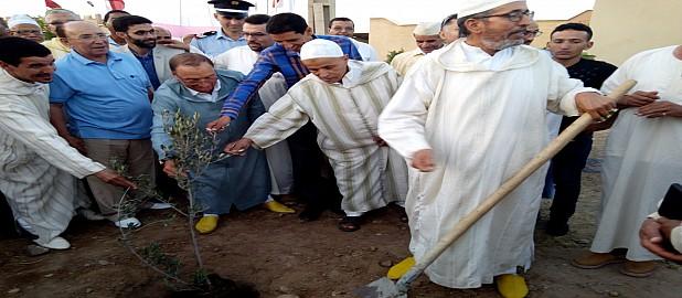 تارودانت :مهرجان تنزرت للزيتون :تخليف 5100 شجرة زيتون