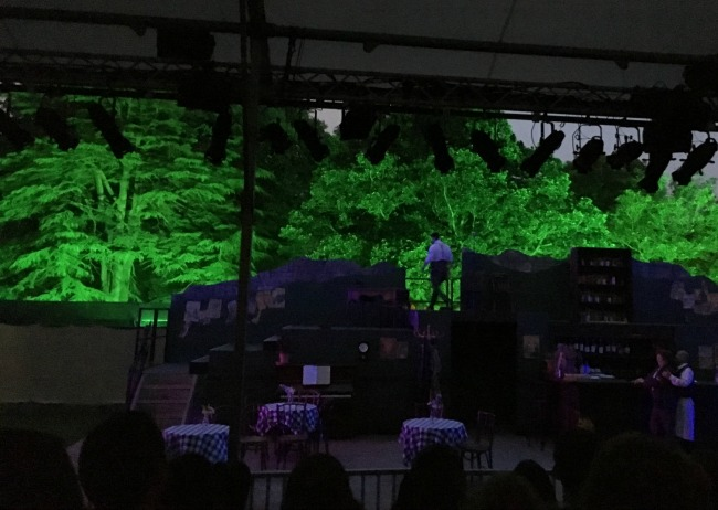 'Allo-'Allo-Cardiff-Open-Air-Theatre-Festival-Review-trees-lit-up-green-behind-the-dark-stage