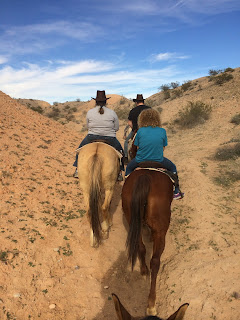Horseback Ground Tour in Las Vegas