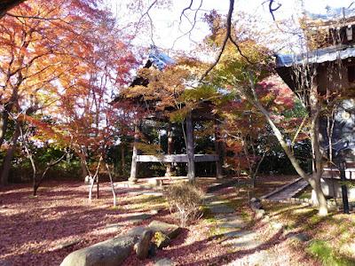 龍尾寺境内 もみじの紅葉